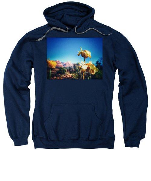 Finish Sweatshirt