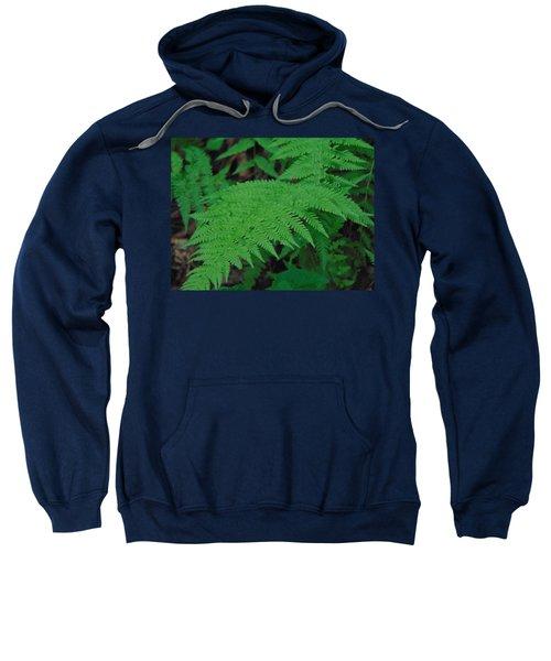 Forest Fern Sweatshirt