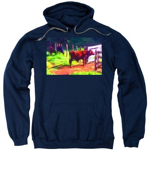 Franca Cattle 2 Sweatshirt