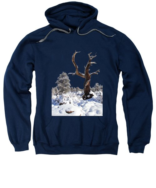 Fresh Snow Sweatshirt