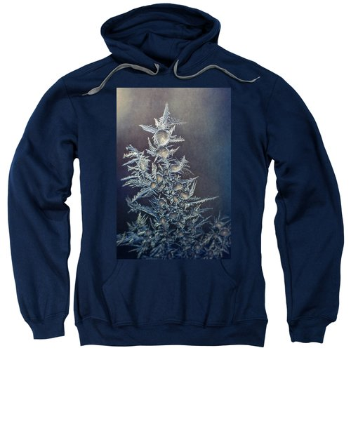 Frost Sweatshirt