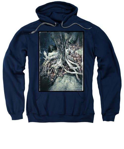 Gnarled Rooted Beauty Sweatshirt