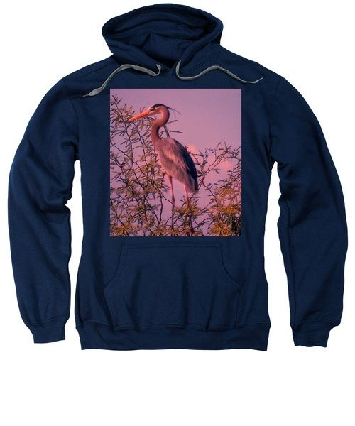 Great Blue Heron - Artistic 6 Sweatshirt