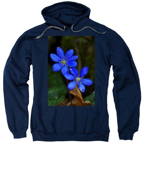 Hepatica Nobilis Sweatshirt