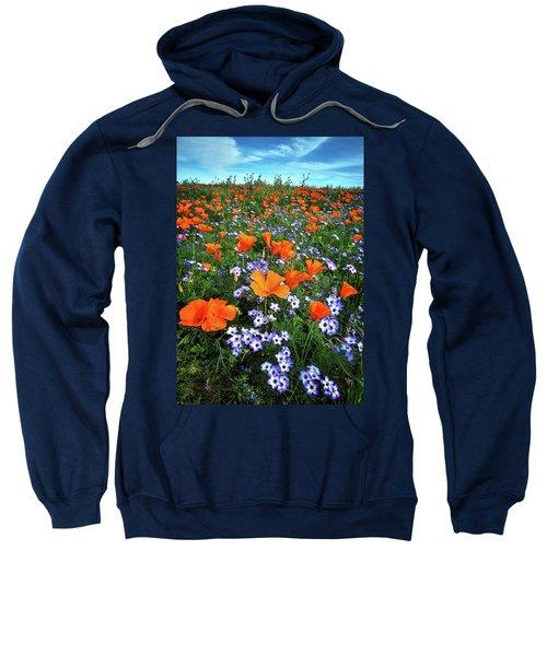High Desert Wildflowers Sweatshirt