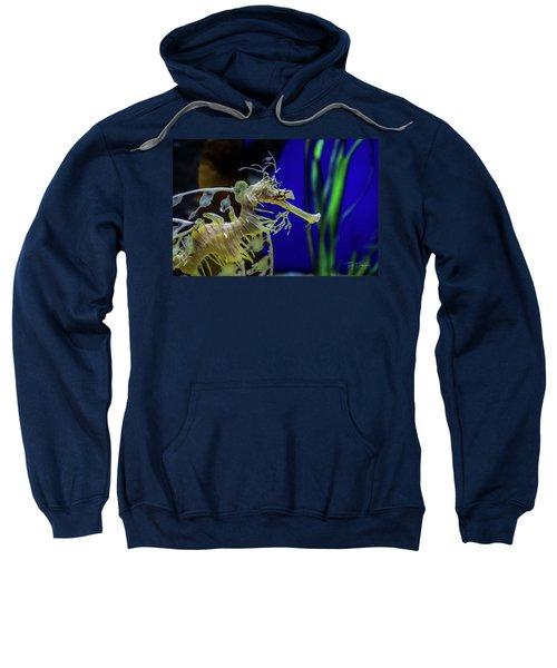 Horsey Sweatshirt