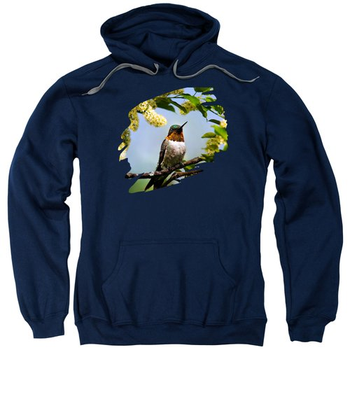 Hummingbird With Flowers Sweatshirt by Christina Rollo