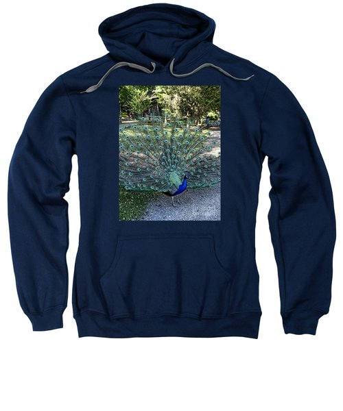 In All His Glory Sweatshirt