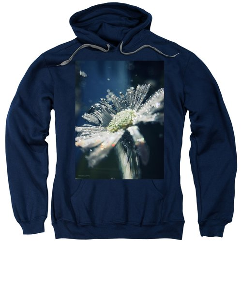 In The Big Blue Sweatshirt