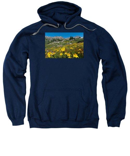 Indian Peaks Summer Wildflowers Sweatshirt