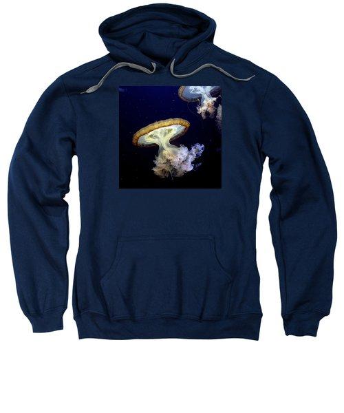 Invasion Of The Japanese Sea Nettles Sweatshirt