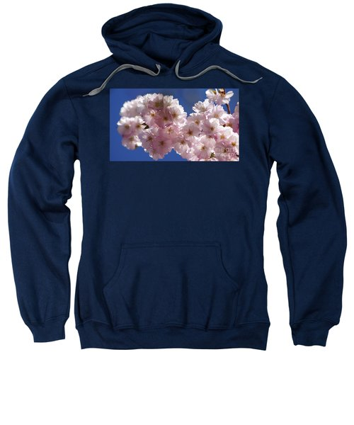 Japanese Flowering Cherry Prunus Serrulata Sweatshirt
