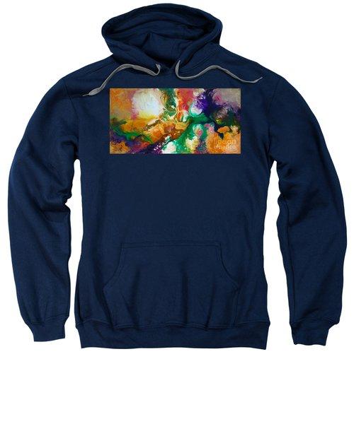 Jupiters Moons Sweatshirt