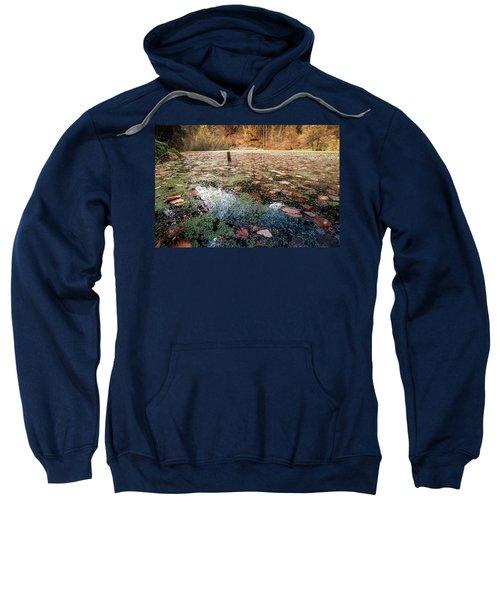 Leaves On The Lake Sweatshirt