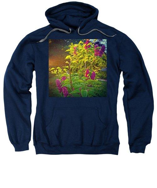 Lilac Tree Sweatshirt