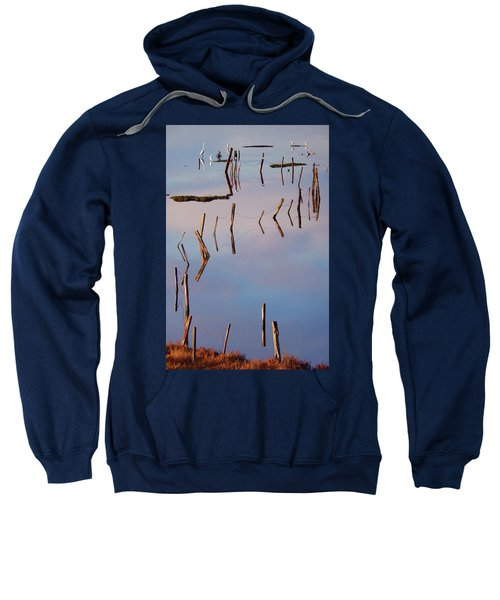 Liquid Assets Sweatshirt