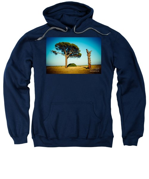 Live And Dead Tree At Seacoast Sweatshirt