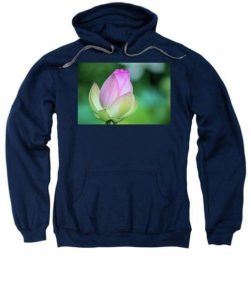 Lotus Bud Sweatshirt