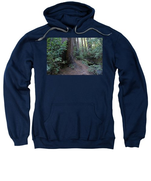 Magical Path Through The Redwoods On Mount Tamalpais Sweatshirt