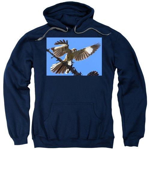 Mockingbird Sees Me I Sweatshirt