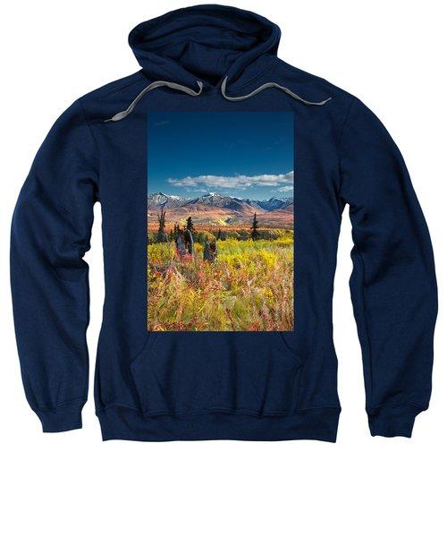 Nelchina Basin Sweatshirt