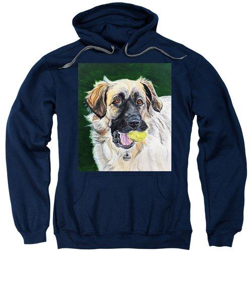 Not Too Old To Play Sweatshirt