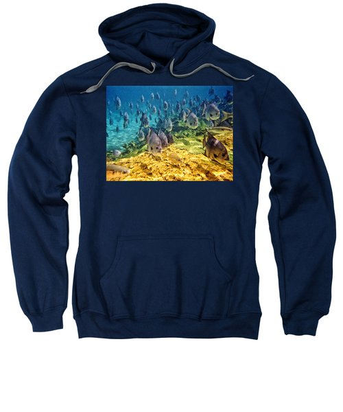 Oceans Below Sweatshirt