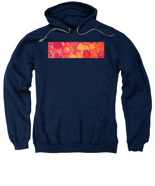 Pebbles At Sunset  Sweatshirt
