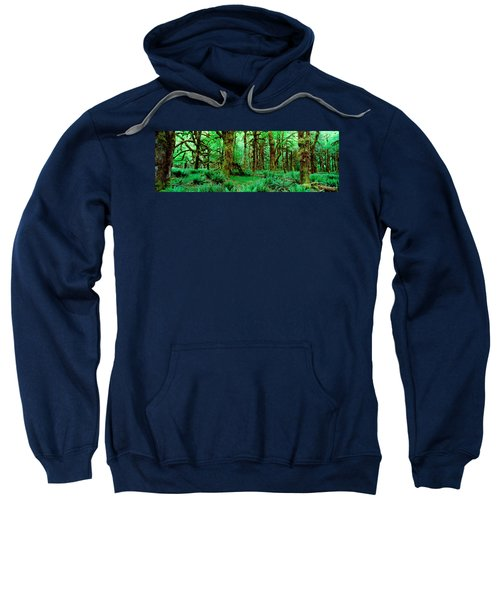 Rain Forest, Olympic National Park Sweatshirt