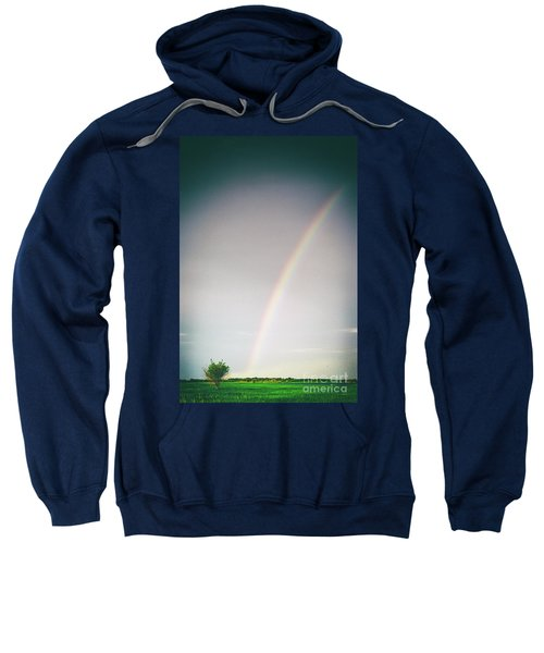 Rainbow #0157 Sweatshirt