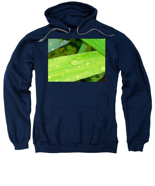 Raindrops Sweatshirt