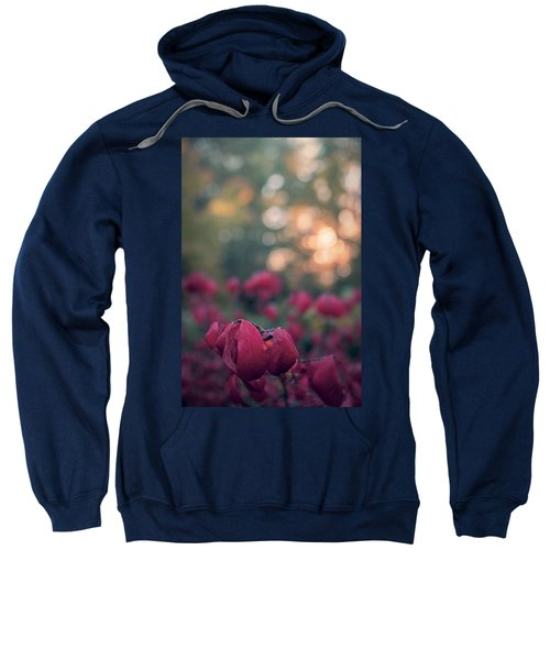 Burning Red II Sweatshirt