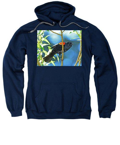 Redwing Blackbird Sweatshirt
