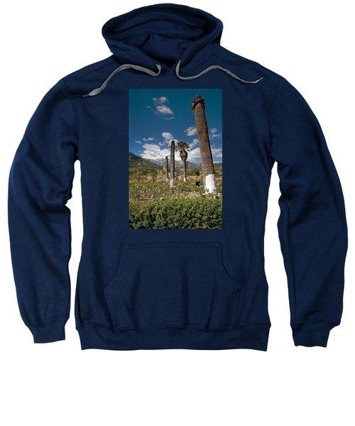 Reminders Of Tragedy Sweatshirt