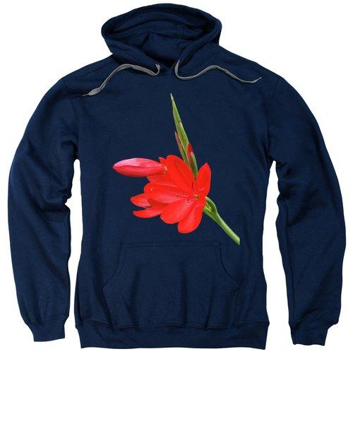 Ritzy Red Sweatshirt