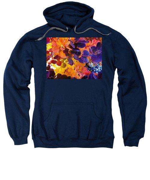 Royal Purple Smoke Bush Sweatshirt