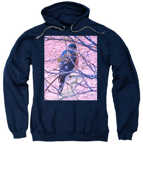 Sharp-shinned Hawk Hunting In The Desert 2 Sweatshirt