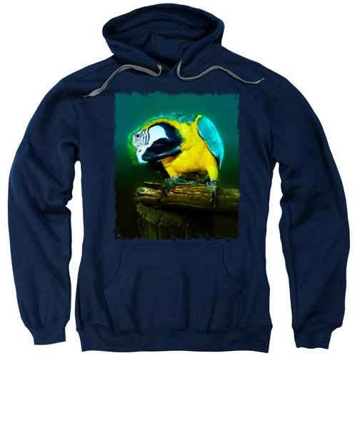 Silly Maya The Macaw Parrot Sweatshirt by Linda Koelbel