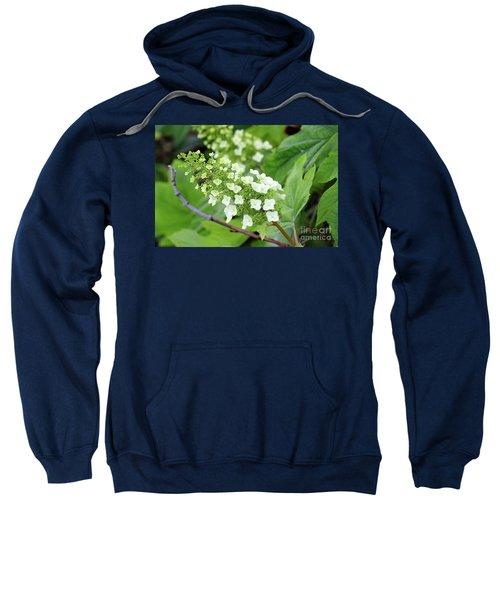 Snow Queen Hydrangea Sweatshirt