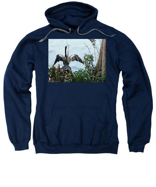 Spread Your Wings Sweatshirt