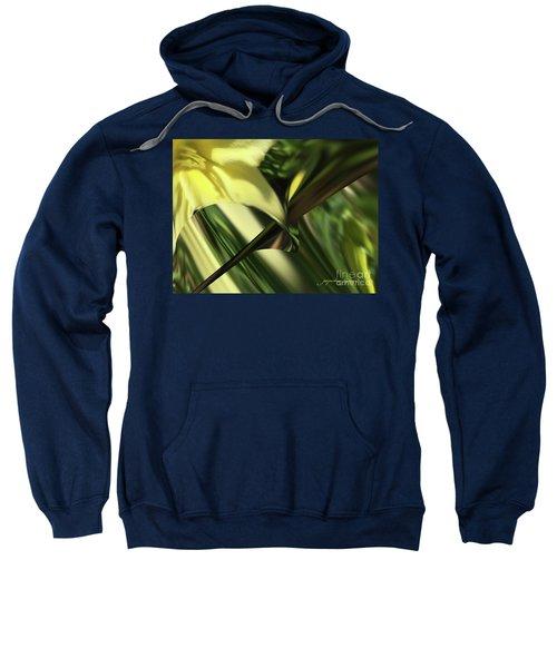 Spring Sweatshirt