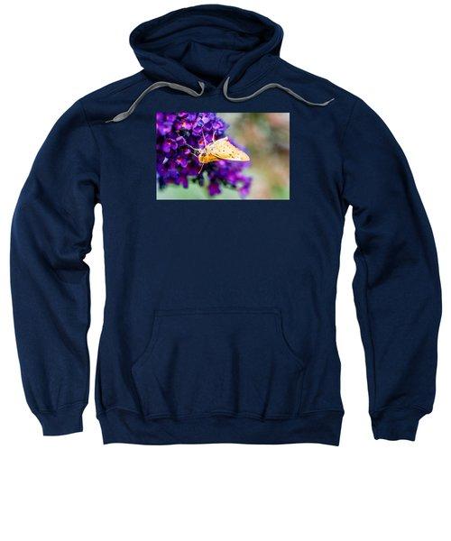 Spring Moth Sweatshirt