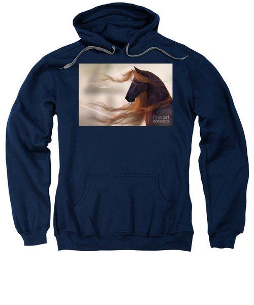 Surveying His Domain Sweatshirt