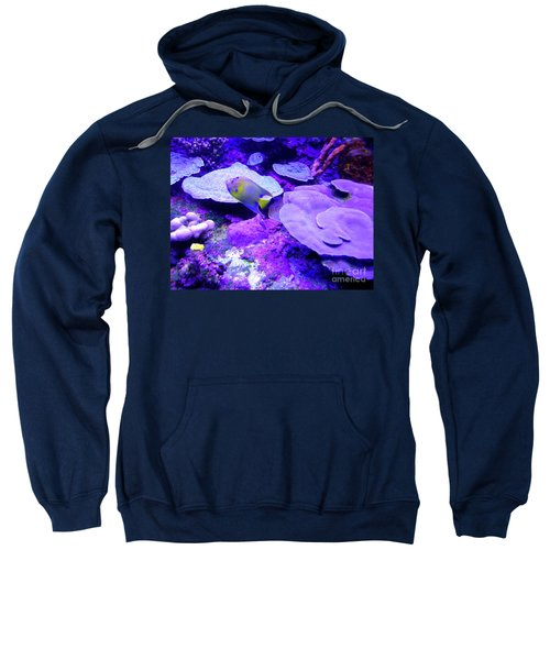 Sweatshirt featuring the photograph Ta Purple Coral And Fish by Francesca Mackenney