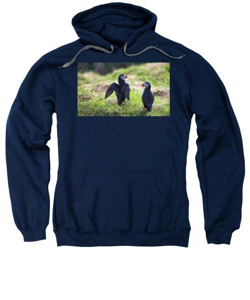 The Angel Puffin Sweatshirt