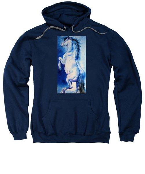 The Blue Roan Sweatshirt