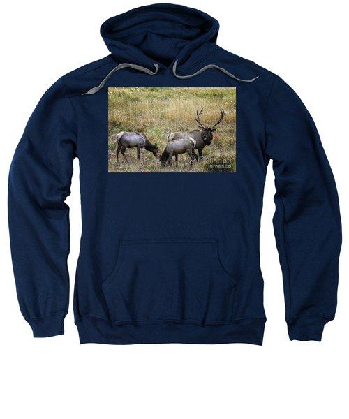 The Rut Sweatshirt