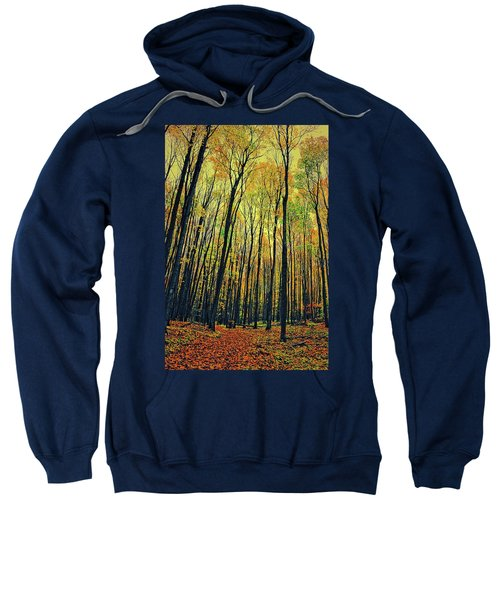 Sweatshirt featuring the photograph The Woods In The North by Michelle Calkins