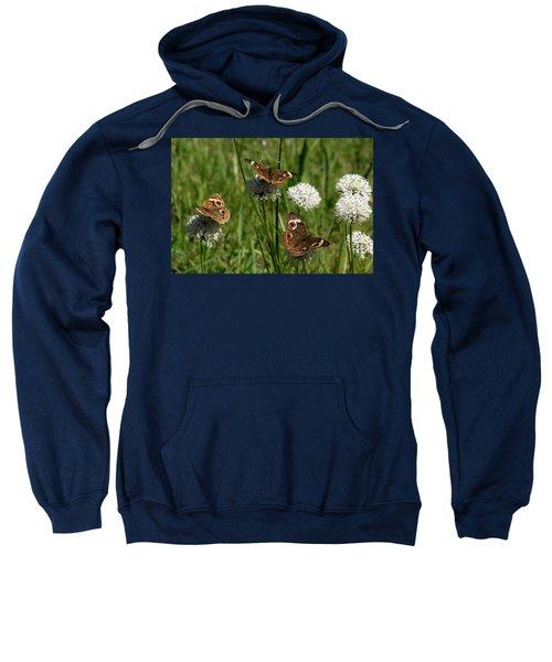 Three Buckeye Butterflies On Wildflowers Sweatshirt