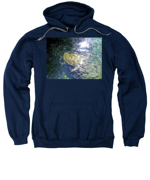 Sweatshirt featuring the photograph Turtle Water Glide by Francesca Mackenney